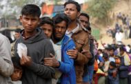 US supports only voluntary return of Rohingyas: State dept official