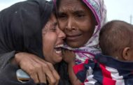 UN official convinced of Myanmar Rohingya 'genocide'