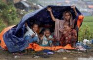 Myanmar screens 42,040 Rohingyas for return
